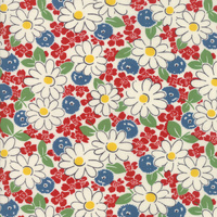 Play All Day Fabric 21742 11 by American Jane Patchwork Fabric