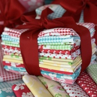 Janey 10 X 1/2m Fabric Bundle